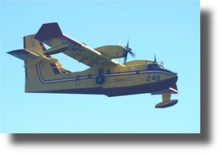 dsc01253firescooper